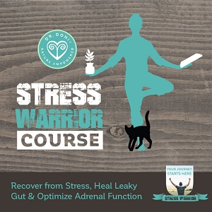 Stress Warrior Online Course